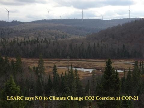LSARC no 2 CO2 Coercion